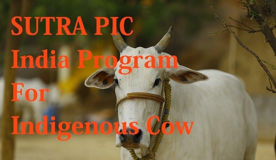 SUTRA PIC India Program